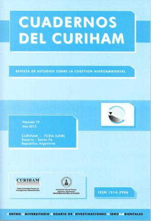 Ver Vol. 19 (2013)